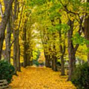 Autumn Entrance 2 Poster