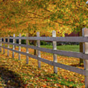 Autumn Fence Poster