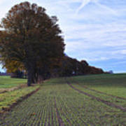 Autumn Fields, Syke, Germany Poster