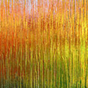 Autumn Fire Abstract Poster