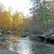 Autumn Flows Toward Winter Poster