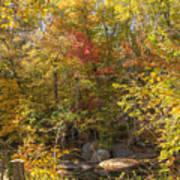 Autumn Glory - Unami Creek Sumneytown Pennsylvania Usa Poster