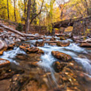 Autumn In American Fork Canyon Poster