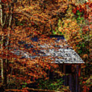 Autumn In Cades Cove Smnp Poster