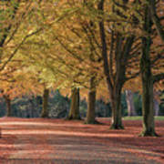 Autumn In Clifton, Bristol Poster