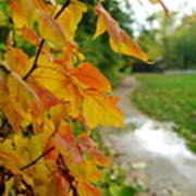 Autumn In Ellenberger Poster