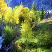 Autumn In Ophir - Colorado - Aspens Poster
