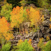 Autumn In The Uinta Mountains Poster