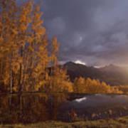 Autumn Landscape Near Telluride Poster