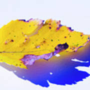 Autumn Leaf Abstract Poster