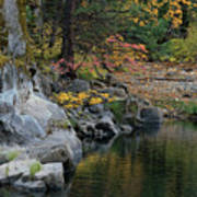 Autumn Leaves And Merced River, Mariposa County, California Poster