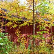 Autumn Michigan Barn  Poster