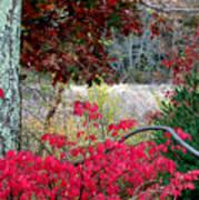 Autumn Mixtures Poster