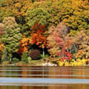 Autumn On Canoe Brook Lake Poster
