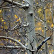 Autumn On My Mind Poster