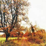 Autumn On White Poster