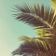 Autumn Palms Poster
