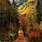 Autumn Path To Stewart Falls Poster