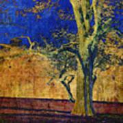 Autumn Pecan Poster