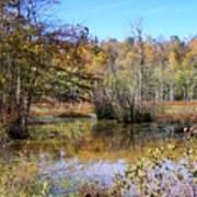 Autumn Pond Poster