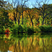 Autumn Reflections On Salt Creek IIi Poster