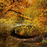 Autumn River Views Poster