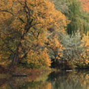 Autumn Riverbank Poster