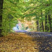 Autumn Road 2 Poster