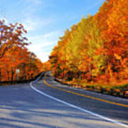 Autumn Scene With Road In Forest 2 Poster