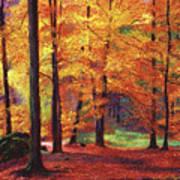 Autumn Serenity Poster by David Lloyd Glover