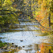 Autumn Stream Reflections Poster