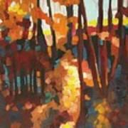 Autumn Sunlight Poster