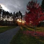 Autumn Sunset, Shawnigan Lake Poster