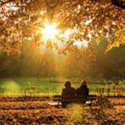 Autumn Sunshine In The Lichtentaler Allee. Baden-baden. Germany. Poster