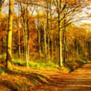 Autumn Poster by Svetlana Sewell