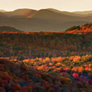 Autumn Tapestry Poster by Neil Shapiro