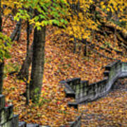 Autumn Trail - Rockyriver Metroparks Poster