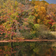 Autumn Tranquility 1 Poster