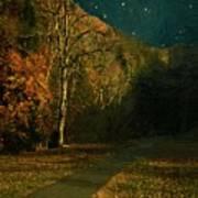 Autumn Tunnel Poster