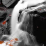 Autumn Waterfall Iv Poster