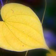 Autumn Whisper Poster