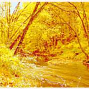Autumn Woodland Stream Pennsylvania Digital Art Poster