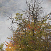 Autumn3 Poster