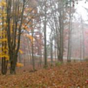 Autumnal Mist Poster