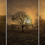 Autumnal Triptych. Poster