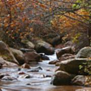 Autumns Flow Poster