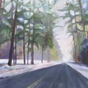Avenue Of The Pines-winter Poster