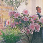 Azalea Poster by Carl Larsson