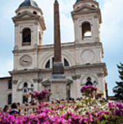 Azaleas On The Spanish Steps In Rome Poster