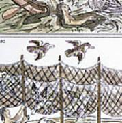 Aztec Fishermen Poster